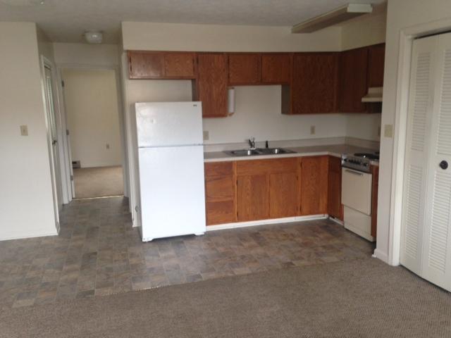 photo- kitchen